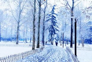 关于雪的唯美句子集锦
