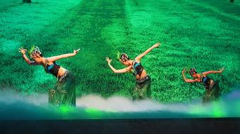 傣族舞表演-北大资源品牌巡礼暨北大文化之夜发布会成功举办