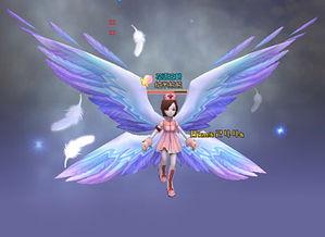 终极梦想,天使之翼 翅膀系列 -新飞飞