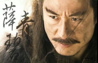 对他的敬慕胜过小李飞刀传人李曼青.   薛青碧是个优秀的剑客,却不...