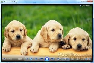 图4 兼职图片浏览-Windows Media Player 12 全新炫体验