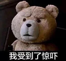 泰迪熊表情包 我受到了惊吓