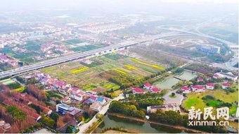鸟瞰上海郊野 后花园 金山廊下公园 崇明长兴岛公园