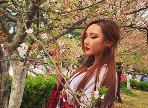 武大看樱花怎么预约