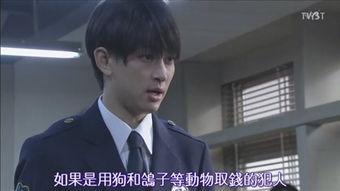 左目侦探 田中小爱进行时END 截图更新至最终回
