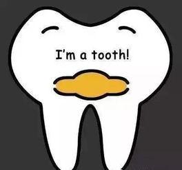 笑看牙齿君的幽默爱情语录