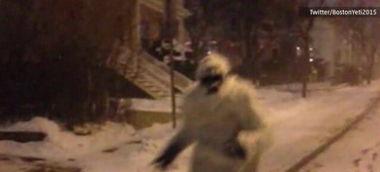 暖心 美神秘 类人猿 冰雪中提醒路人注意安全