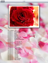 flower花ios-Flower Language 花语