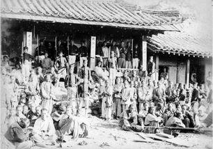奥比岛从清朝来的客人
