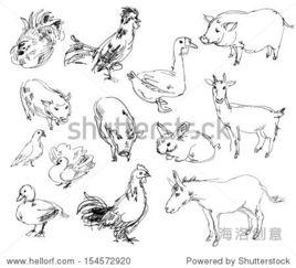 农场动物简笔画-Farm animals. Set. Hand drawn