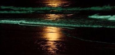 隔流界-一天风月流空界,   隔岭钟鱼应海潮;   江月不随流水去,   天风直送海...