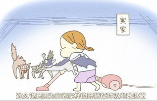...海豚图片闺蜜图片小犀牛图片森林图片卡通头像男生 幼儿...超萌的搞...