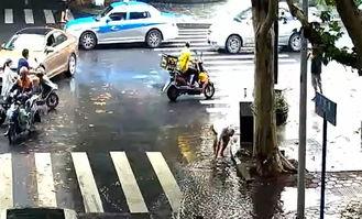 暴雨后 白发老人在积水里数次弯下腰