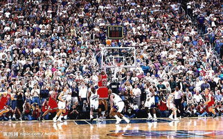 人与自然田野篇放大图nba篮球明星-迈克尔 乔丹图片