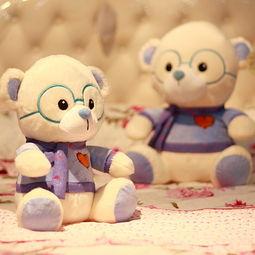 眼镜熊 西施熊 眼镜熊消失的作文