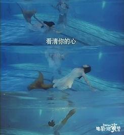 钟丽缇的这件鱼尾价值60万港币-关于 美人鱼 IP的银幕衍化进程,你知...