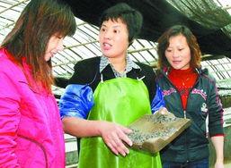...带领留守妇女积极发展海上养殖业.(资料图片)-留守的日子