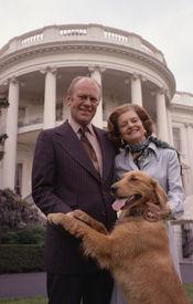を饲っていた.すべての米国の歴代大统领のうち、ただ三人はペット...