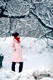大雪小雪又一年