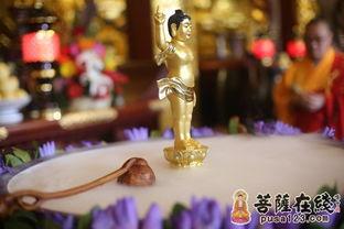 太子像法相庄严安放在花团锦簇撒满花瓣的香汤之中(图片来源:菩萨...