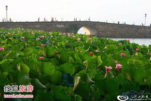 ...230; 1、西湖断桥 白娘子和许仙的故事在中国家喻户晓,断桥也?-国...