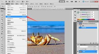 ...换-缩放,调整图形大小.如图所示-ps软件使用矢量图层蒙版工具合...