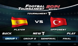 Play Real Football Tournament 9