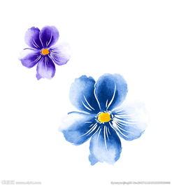 紫色花朵蓝色花朵素材图片