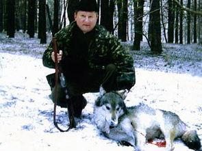 守猎爱-据俄罗斯新闻网报道,乌克兰地区党议员格尔曼1月17日下午宣布,人...
