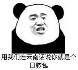 心情贼几把复杂-表情 用我们连云南话说你就是个 日脓包 表情