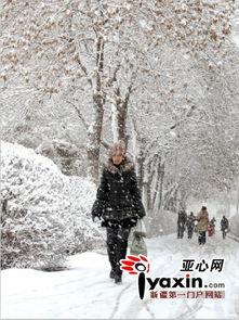 全部落满了雪,天空飘着雪花,给出门上班的行人带来不便.   走在奎...