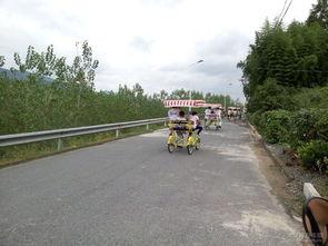 杭州富阳桐洲岛自驾游