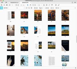 ...性的 5 款 PDF 编辑器对比,看看哪款适合你