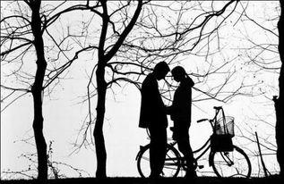 """请勿轻言""""我爱你"""""""