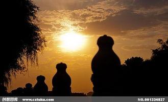 夕阳映玉栏图片