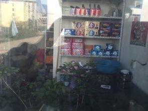强奸人妻系列-高和妻子就生活在学校内,透过小卖店窗子能看到生活用品.邵克 图-...