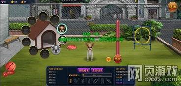 热血拳皇宠物系统 增强战力征战神族