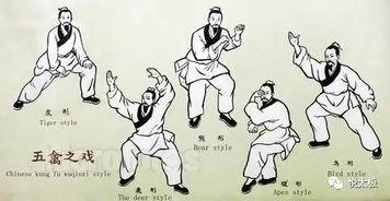 万象位面之尘封逆行者-国家推广的标准五禽戏 ,练完马上就有效!   其创编者华佗(约145-...