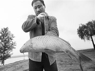 黄河岸边感受农民兄弟的悠闲生活 -开封日报社多媒体数字报刊平台演示