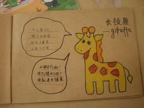 亲子幼儿自制图书样本-丰富的读书周活动