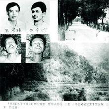 ...指的是沈阳兄弟王宗坊(王+方)和王宗玮.1983年,从大年三十在...