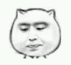 表情 萌版猥琐猫表情包 黑马素材网 表情