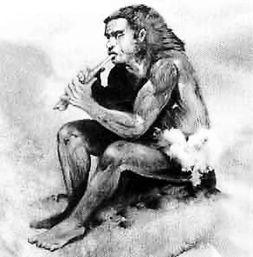 时间里,我们的类人猿祖先一直保持着矮胖敦实的体形.而他们保持这...