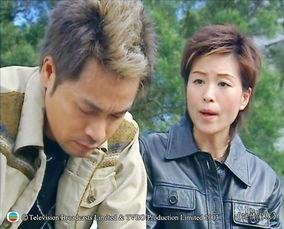 TVB 谜情家族 14