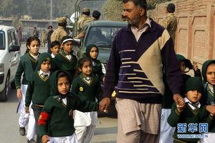 巴基斯坦一军人子弟学校遇袭 至少141人死亡多为儿童