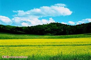 驰骋在蓝天白云下,北京周边大草原自驾游路线