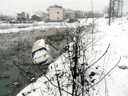 琛ㄦq 澶村q iav.-2月18日,无为县牛埠镇的王某夫妻俩搓了一夜麻将后,冒雪开车回家...