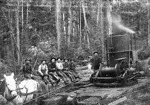 兴动棋牌鸡西麻将破解- 近日,网上发布的一组黑白旧照记录了19世纪至20世纪初美国伐木工...