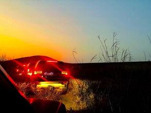 归途已是暗夜   第二天   枯黄的草... 还有远方天际的落日   和脚下荒芜...
