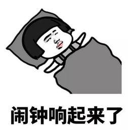 赵四gif微信表情包 第1页